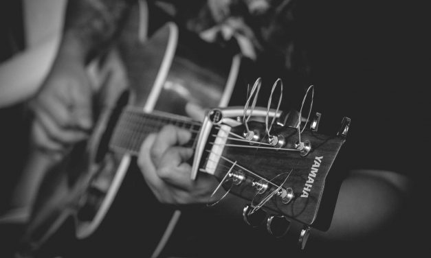 Best Acoustic Guitar for Blues [TOP 7 REVIEWS] Full Buying Guide 2017
