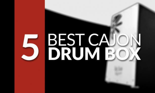 5 Best Cajon Drum Box Reviews [BUYING GUIDE] in 2017